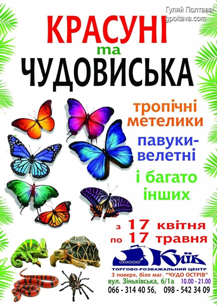 PВиставка метеликів Красуні і Чудовиська