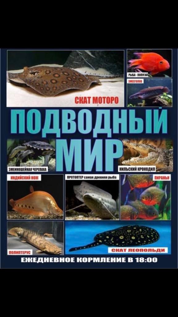 PВиставка Підводний Світ