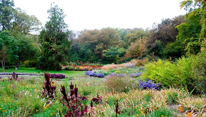 Poltava. Botanical garden