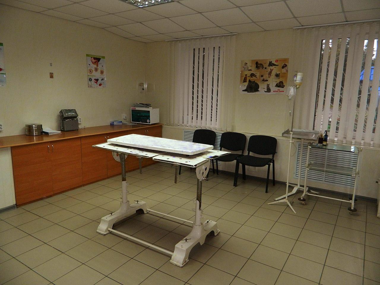 Науково-виробнича клініка ветеринарної медицини кафедри хірургії та акушерства